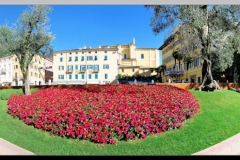 Flowers in Riva