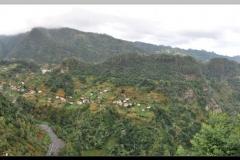 Rib Metade From Near Lombo Grande