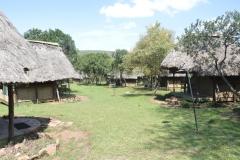 Maasai Mara - Acacia Camp