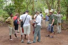 Zanzibar - Spice Walk Group