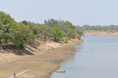 South Luangwa 28
