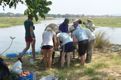 Zambezi - Lunch Stop