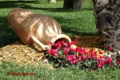 Sorrento Flower Display