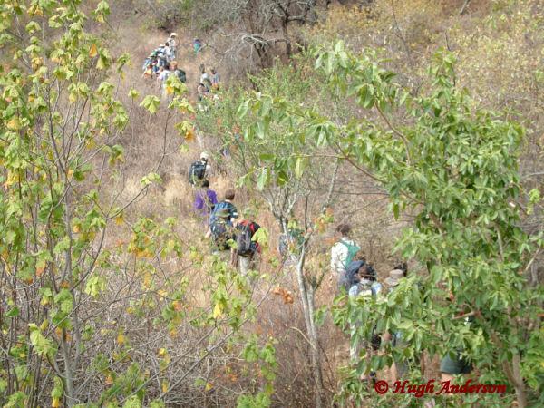 72010 Climbing Longido