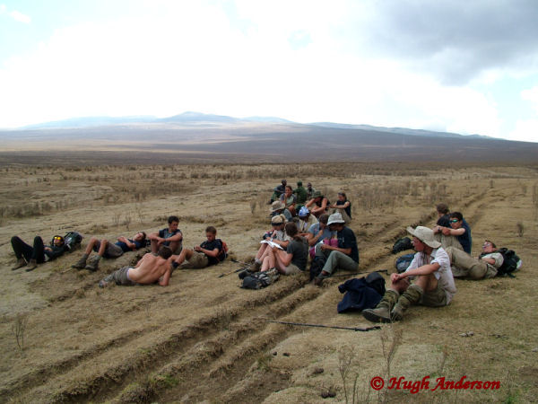 81308 Lunch in the Embulbul Depression