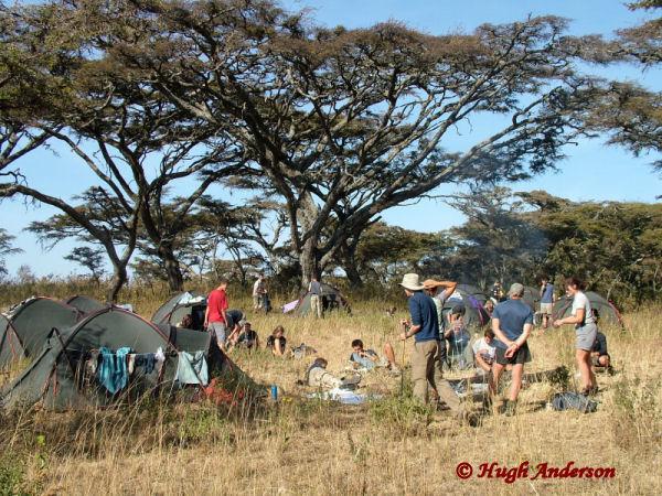 81502 Esirwa Camp