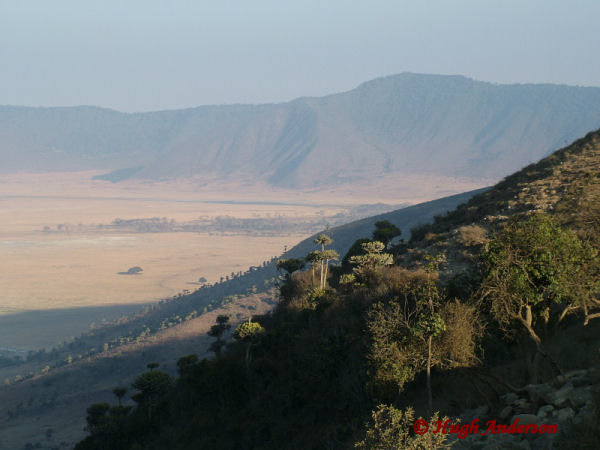 81743 Nogorongoro Crater