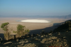 81742 Lake Magadi in Ngorongoro Crater