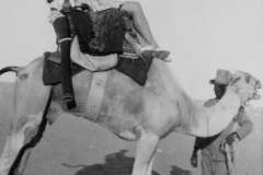 1 Peggy on a Camel