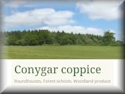 Conygar Coppice