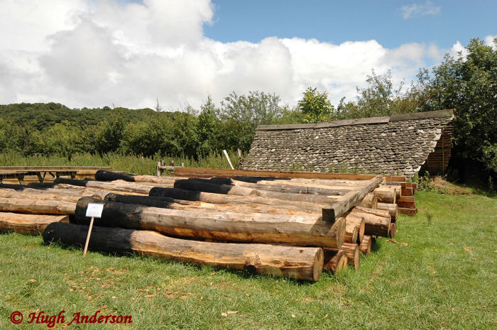 Posts for the Viking Longhouse