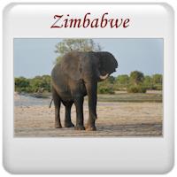 Safari 2013 - Zimbabwe