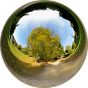 Stourhead - Autumn - Mirror Ball