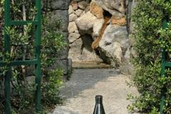 Sir William Walton's garden Ischia 19