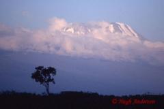 Kibo from Meru 19960211