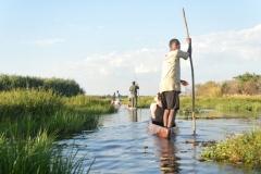 Okavango - Poling Through the Pathways