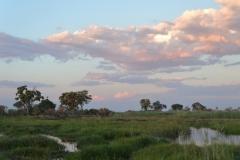 Okavango Scenery