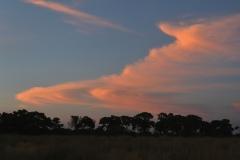 Okavango Sky