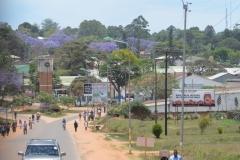 Mzuzu 2013