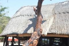 The Tree at Kande Beach