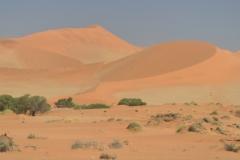 Sossusvlie - The Namibian Desert