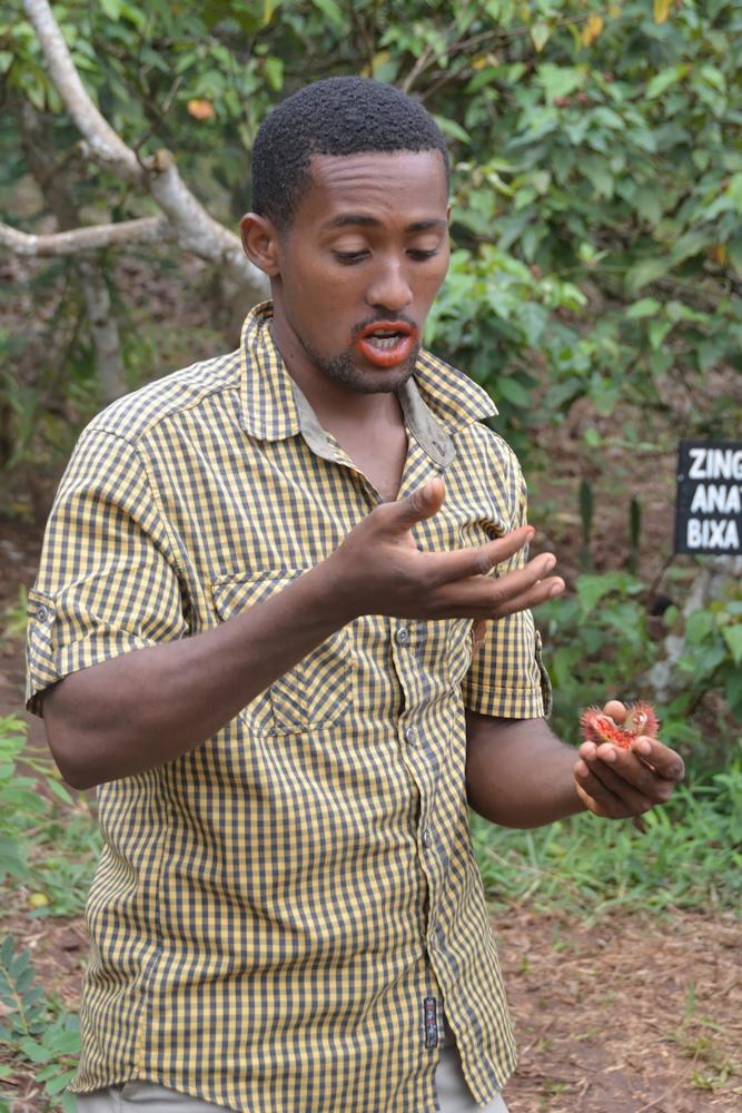 Zanzibar - Demonstrating the Properties of a Red Fruit