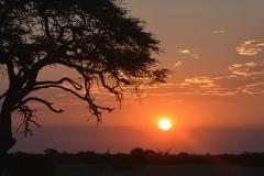 Hwange - Sunset