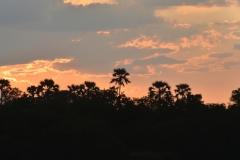 Victoria Falls - Booze Cruise Sunset