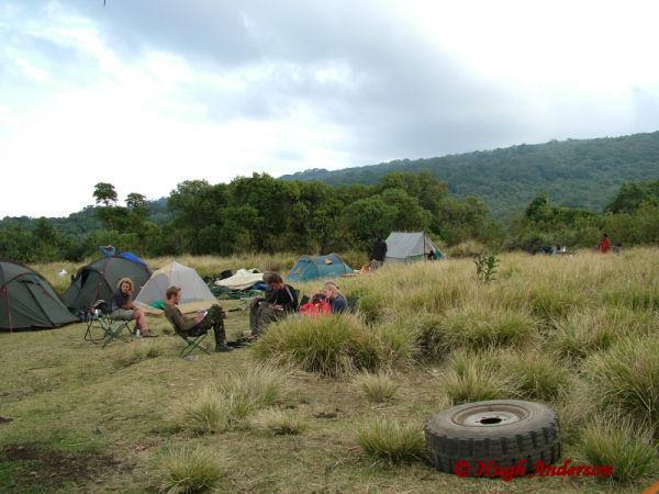 81314 Olmoti Camp