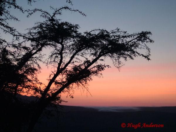 81603 Dawn at Esirwa Camp