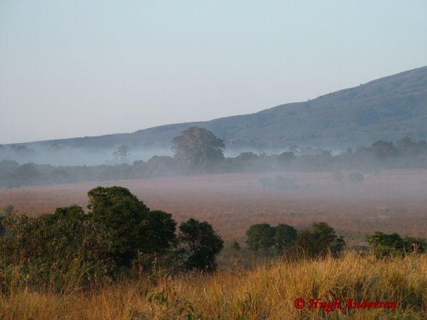 81704 Misty Dawn at Simba Camp