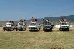 81613 Ngorongoro Safari lineup
